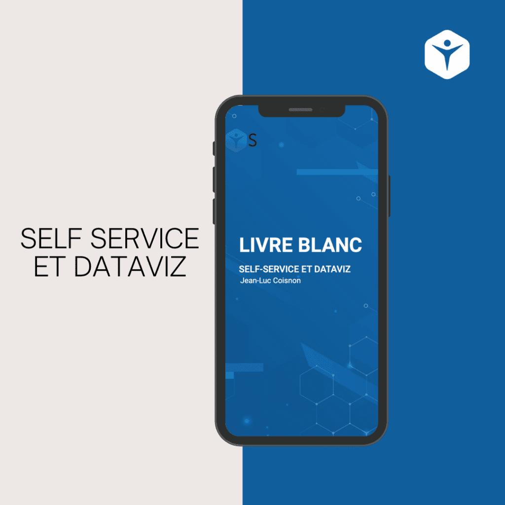 Livre blanc - self service- dataviz